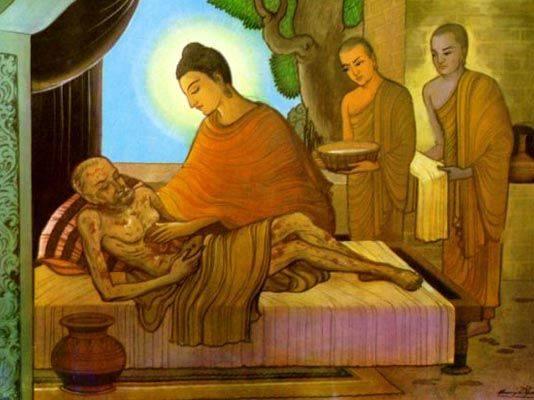 Buddhacaresforthesick2558