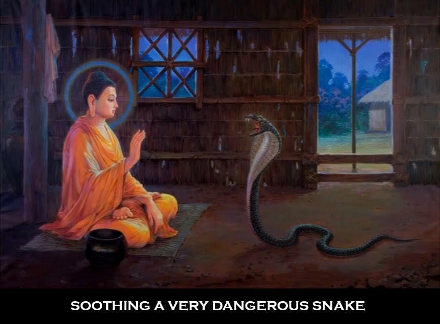 Buddha Story30
