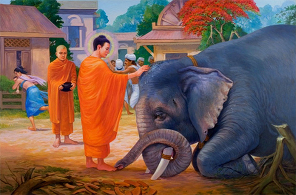 Buddha and elephant